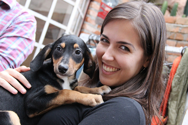 Proteção animal Vila Nova Conceição